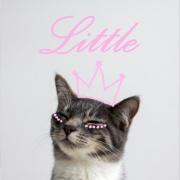 littlenasty